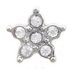 Crystal Star Fish Floating Charm