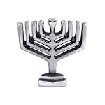 Menorah Floating charm