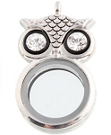 Alloy Owl Floating Locket with Crystals Includes Free Chain