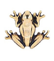 Gold Frog Floating Charm